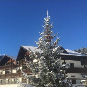 1731 - Inverno